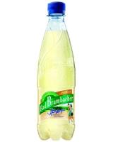 BAD BRAMBACHER SPORT Isotonický nealkoholický nápoj z ochucené min. vody 500 ml (BAD BRAMBACHER SPORT Isotonický nealkoholický nápoj z ochucené min. vody 500 ml)